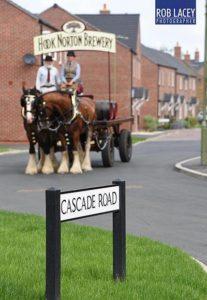 Hook Norton Shires in Cascade Road