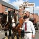 Shire Horses at Hook Norton launch